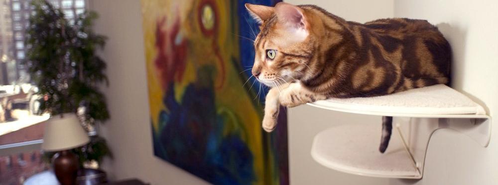 Cat Clouds: Cat Furniture with Great Design